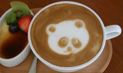 04 - Correlation between Panda and Caffeine