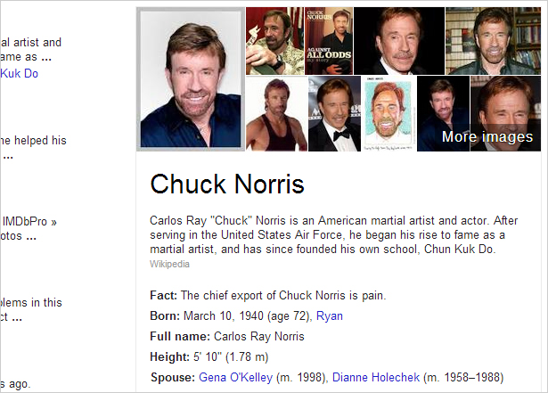 google_easter_egg_norris