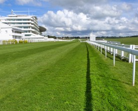 Epsom-Downs