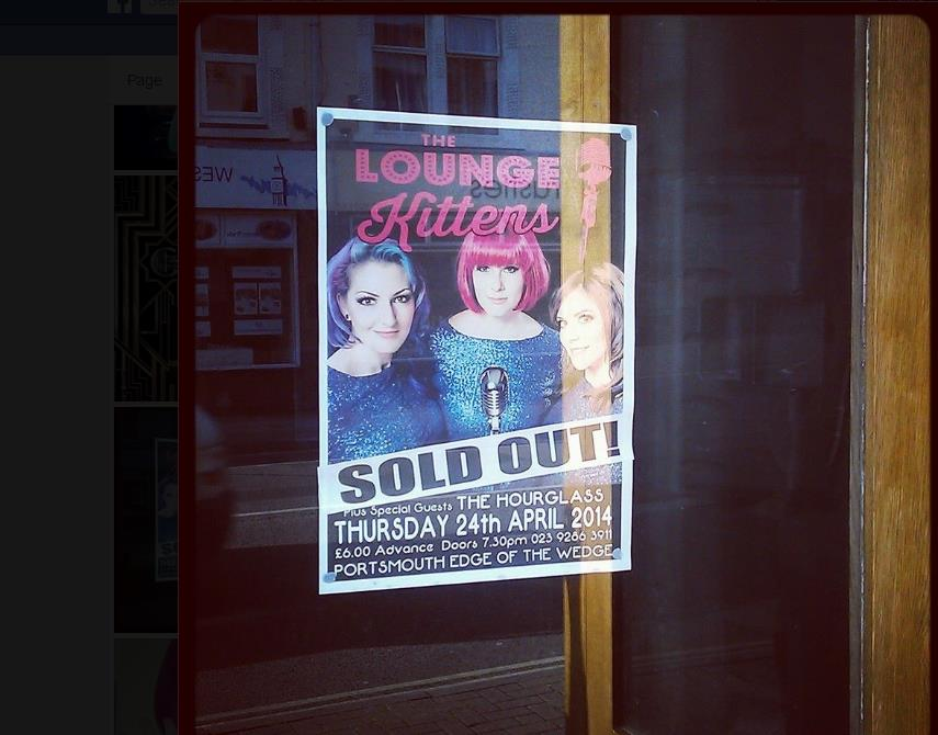 The Lounge Kittens Sold Out