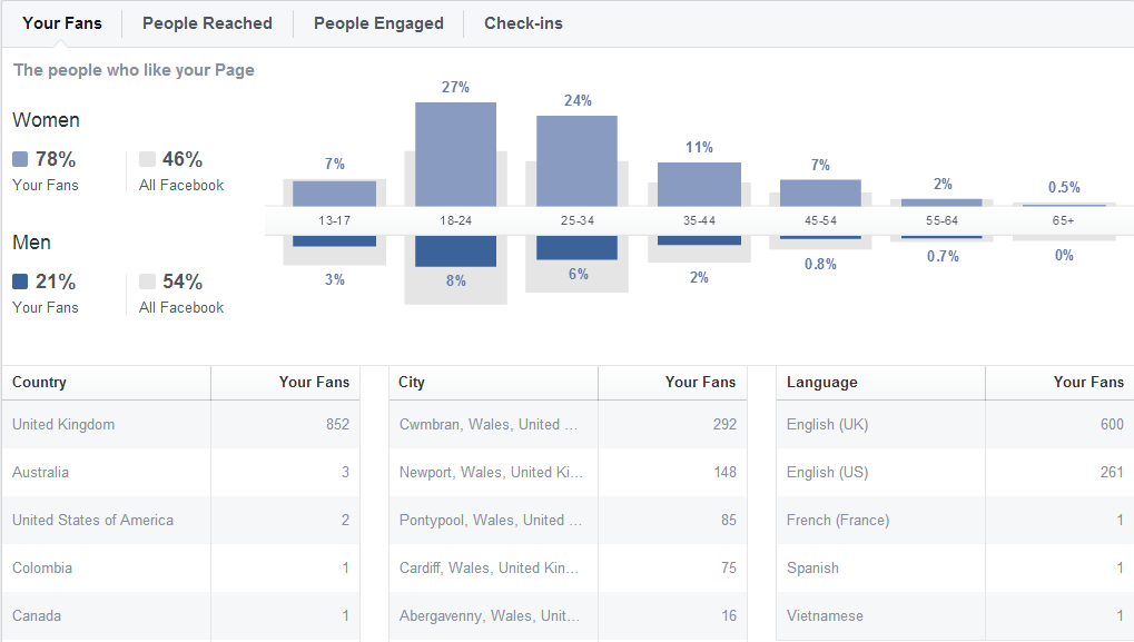 Example of Small Businesses' FB Demographics