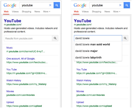Site search in the SERPs