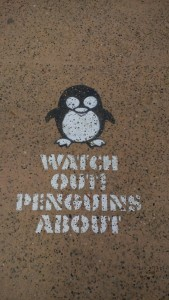 Watch Out Penguins About
