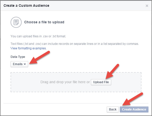 Facebook Custom Audience Select - State of Digital