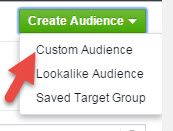 Facebook Custom Audience Tab - State of Digital