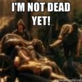 seo-not-dead