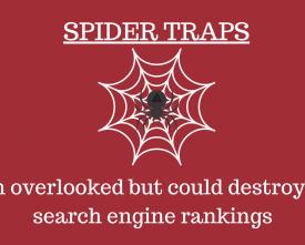 Spider Trap Banner