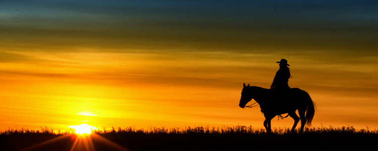 Riding off into the sunset image