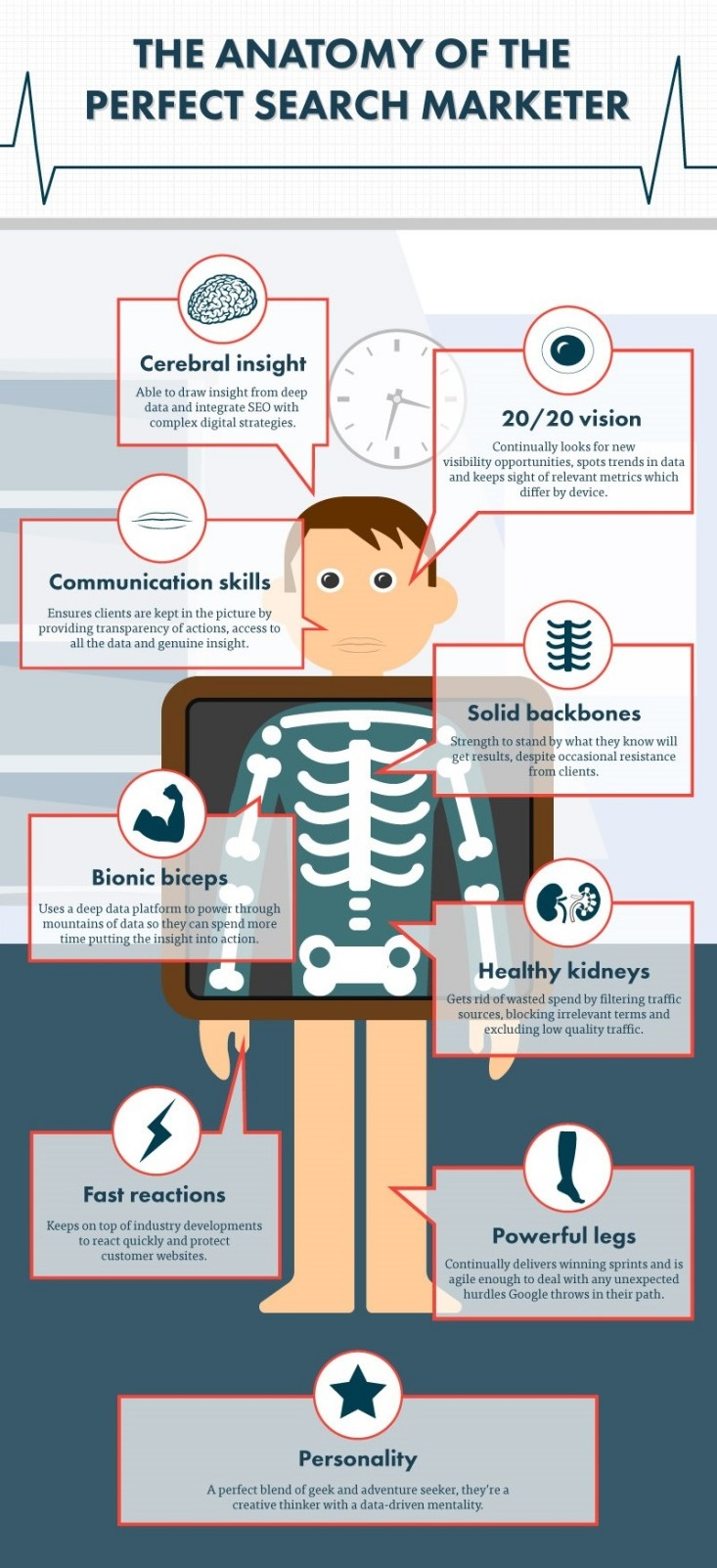 The anatomy of the perfect search marketer - Vertical Leap