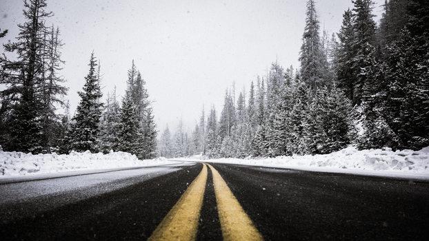 winter-ready-website-guide