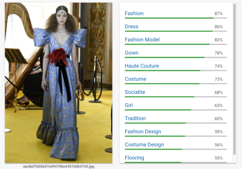 Fashion Photo Cloud Vision test 1